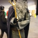 Gandalf the Gray – LotR